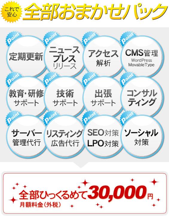 最新のWEB機能を標準装備!全てコミコミ価格のホームページ委託運用